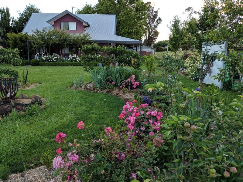 magenta cottage (1)